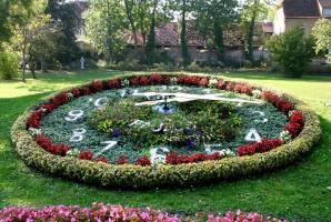 kvetiny_hodiny