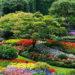 Zahrada jako malířská paleta...