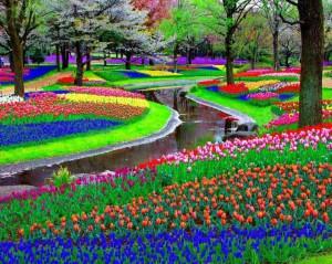 zahradactyri